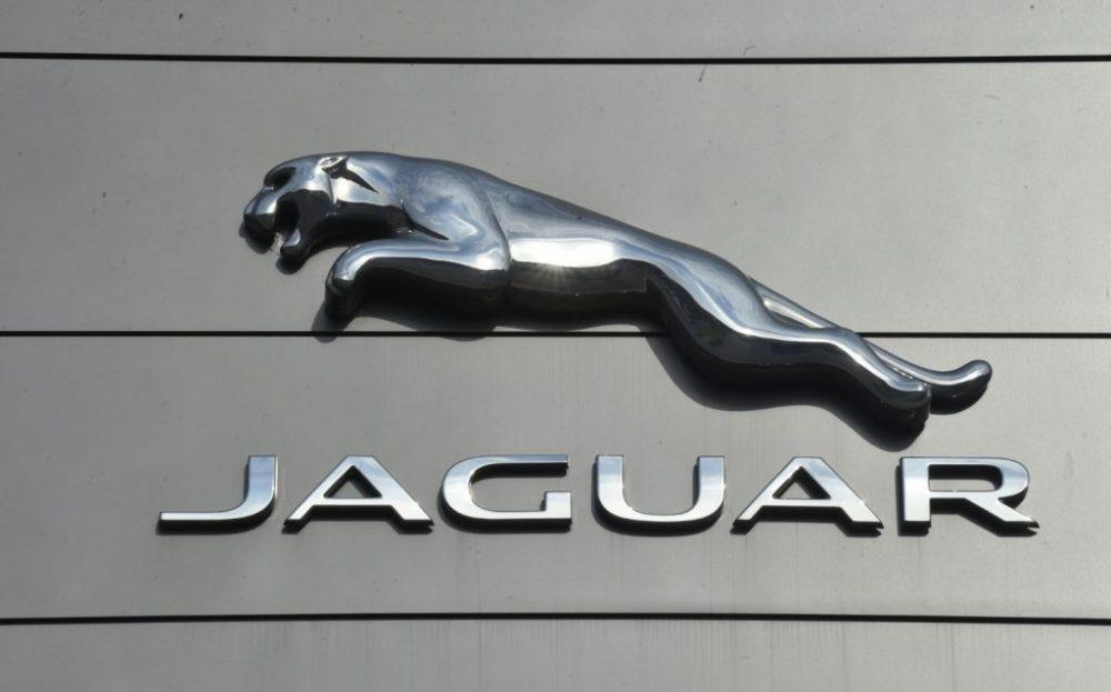 Jaguar-1024x638-1-e1613993152764.jpg